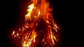 Brand het branden op droog stro en gras in de nacht stock video