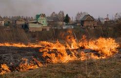 Brand - het branden van een droog gras Stock Afbeeldingen