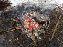 Brand in het hout Royalty-vrije Stock Afbeelding