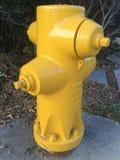 Brand Hidrant Royaltyfri Fotografi