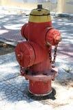 Brand Hidrant Utrustning för röd brand med det gula locket och kedjan royaltyfri fotografi