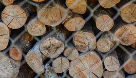 Brand houten voorraad voor de winter stock foto