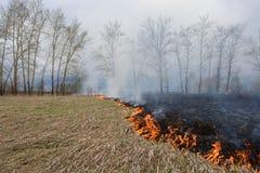 Brand i fältet Arkivbild