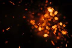 Brand i natur Arkivbilder