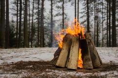 Brand i vinterskogen Fotografering för Bildbyråer