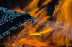 Brand kol, temperatur, flamma, glöd, bränning, trä, brasa, aska, lägereld, apelsin, guling Arkivfoto
