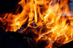 Brand med kol burning trä Makro arkivfoto