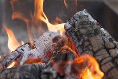 Brand med kol burning trä Makro Bo flammor med rök Trä med flamman för grillfest och laga matbbq ljus färg arkivbild
