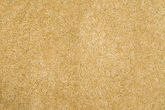 Brand new beige carpet Royalty Free Stock Photo