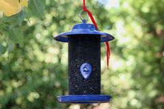 Brand New Blue Bird feeder. This is a new bird feeder out in my yard for the finches Royalty Free Stock Images