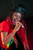 The Brand New Heavies group performs at Usadba Jazz Festival Stock Images