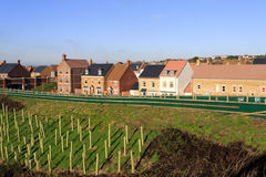 Brand new houses by an embankment with trees planted for noise r. New housing estate in Swindon, Wiltshire, UK. Rather than having houses built in the same style Stock Images