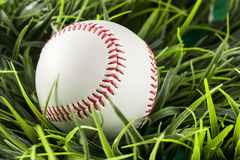 New White Baseball in green grass Stock Photo