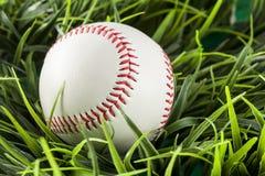 New White Baseball in green grass Stock Photo