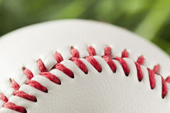 New White Baseball in green grass Royalty Free Stock Photos