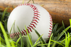 New White Baseball in green grass Stock Images