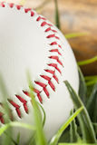 New White Baseball in green grass Royalty Free Stock Image