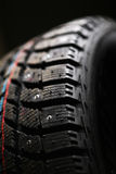Brand new winter tire. Stock Photography