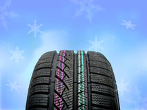 Brand new winter tire Royalty Free Stock Photography