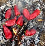 Brand och matlagning på stranden royaltyfri foto