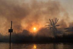 Brand och rök på tropiska fält Arkivfoto