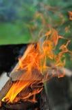 Brand op de barbecue Stock Fotografie