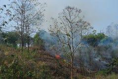 Brand op de heuvel na oogst Royalty-vrije Stock Afbeeldingen