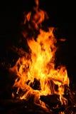 Brand op de picknick Royalty-vrije Stock Foto's