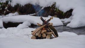 Brand op de sneeuw in bos stock video