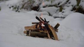 Brand op de sneeuw in bos stock videobeelden