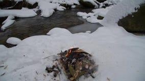 Brand op de sneeuw in bos stock footage