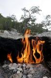 Brand på monteringsskenbild Arkivbild