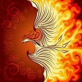 brand phoenix Arkivfoto