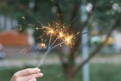 In brand stekend drievoudig Bengaals licht ter beschikking met vage bakground close-upmening royalty-vrije stock afbeeldingen