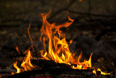 Brand utomhus- 2 Arkivbilder