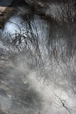 Brand van de het eiland de lage schaal van Zakynthos in volimes 03 Juli 2013, Griekenland Stock Afbeeldingen