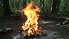 Brand van hout Stock Afbeelding
