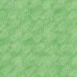 Brandamente folhas do verde no fundo verde fresco Imagem de Stock
