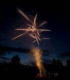 Brandarbeten visar i bergen av Idaho i skogen Royaltyfri Fotografi