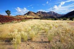 Brandberg山风景-纳米比亚 免版税库存图片