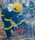 Brandbestrijders in actie na een winderig onweer Stock Afbeeldingen