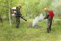 Brandbestrijding in het bos royalty-vrije stock afbeeldingen