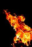 Brandbränning på en svart bakgrund Textur av brand, flamma på en mörk bakgrund Varm flamma av röd-guling färg Isolerat på en blac royaltyfri bild