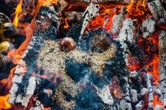 Brandceremonie met aanbiedingen van slechts plantaardige oorsprong tijdens Guru P stock afbeeldingen