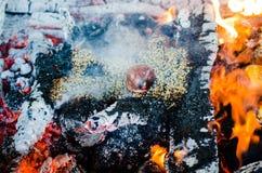 Brandceremonie met aanbiedingen van slechts plantaardige oorsprong tijdens Guru P royalty-vrije stock foto
