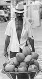 Bärande kokosnötter för man, Brasilien Royaltyfria Bilder