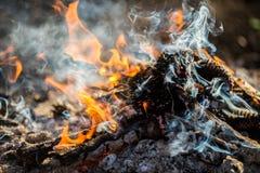 Branden i skogen är den brinnande ljusa varma flamman Royaltyfri Bild