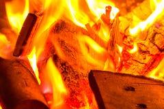 Branden i trädgården Royaltyfri Fotografi