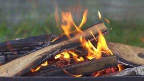 Brandend brandhout in de grill stock videobeelden