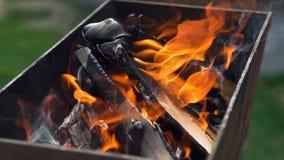 Brandend brandhout in de open haard stock footage